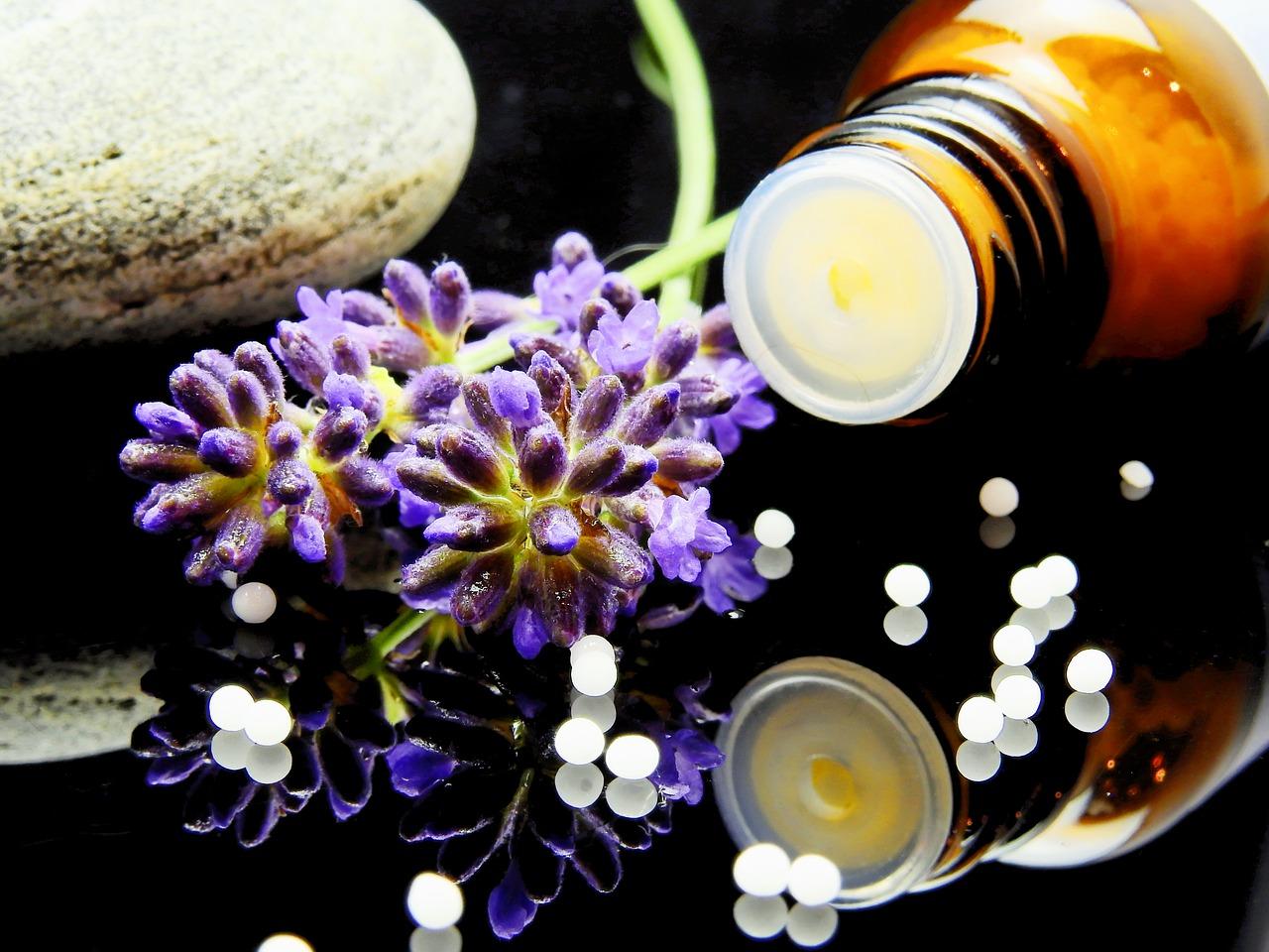 2a edição do Formulário Homeopático está em discussão